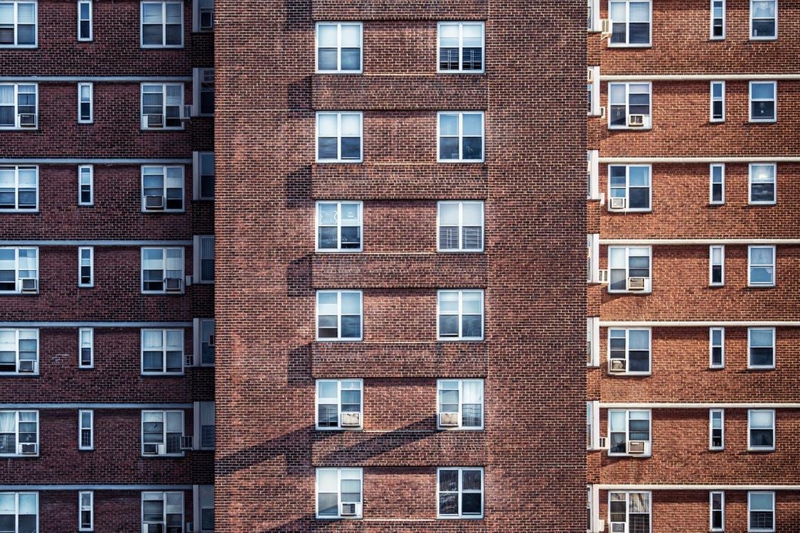pexels-photo (4)